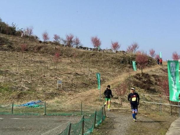 峰山トレイル風景_コース2